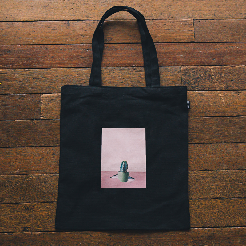 Scene cactus(bag)_Scene with you